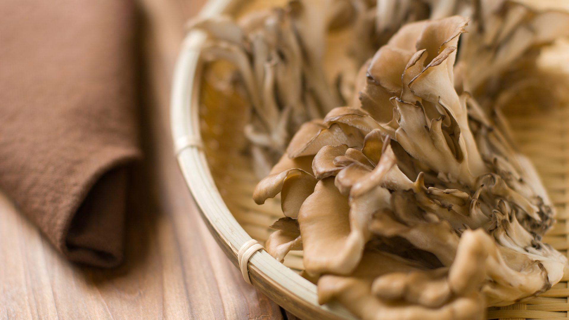 Maitake And Shiitake Mushrooms – The Key To Health?